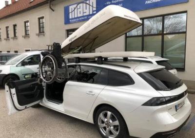 Rollstuhlverladung Dachbox